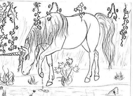 раскраски единорога милые няшные легкие 230 рисунков