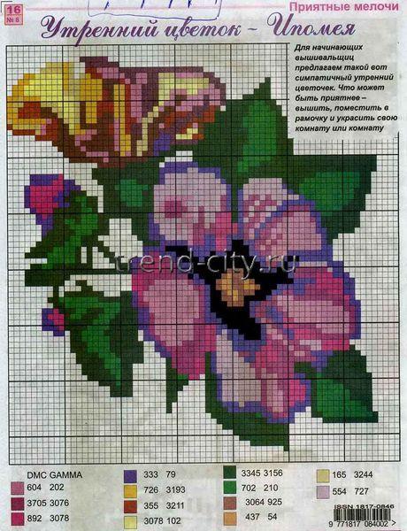 Утренний цветок - Ипомея - Схема для вышивания крестиком